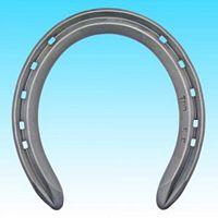 Thoro'Bred Racing Plates  (Steel Training Lite Flat) Size 2F